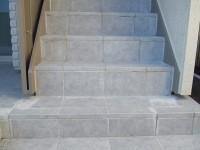 階段の白華