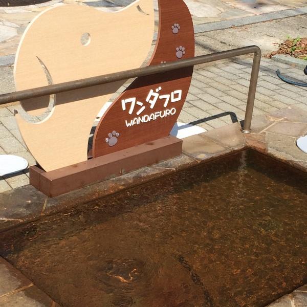 わんちゃんの足湯。ワンダフロ