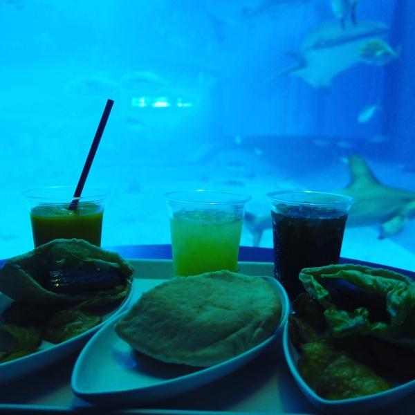 お昼は水族館の大水槽を眺めながら食べられる絶景の席確保!