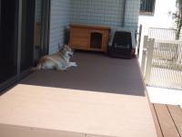 ウッドデッキが熱い時には日陰を求めて移動