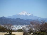 ホテルの庭からは富士山がくっきり