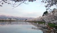 10桜・南波連山