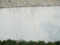 玄関横の外壁のひび割れ