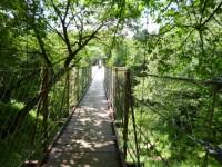 緑の中の吊橋も楽しい