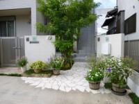 台風の後 玄関先の花1