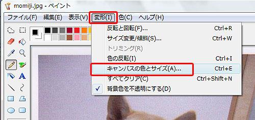 画像サイズ変更Vista07