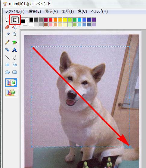 画像サイズ変更Vista16