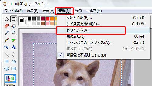 画像サイズ変更Vista17