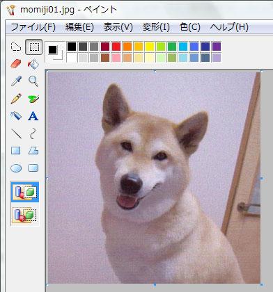 画像サイズ変更Vista18